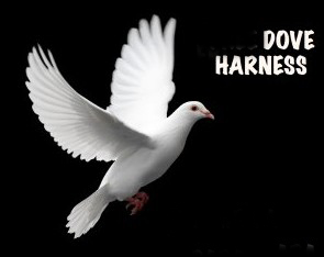 Dove Holders