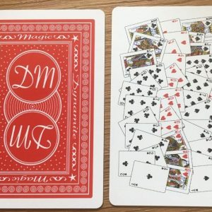 52 on 1 Card Pokersize (4337-W1)