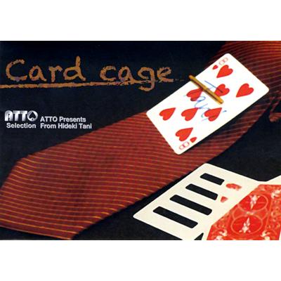 Card Cage by Hideki Tani (2153-W9)