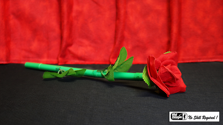 Break Away Rose by Mr. Magic (4704)
