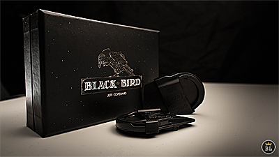 Blackbird by Jeff Copeland (4132)