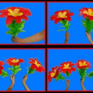 Changing One Flower into Four Flowers (only 1 pc)