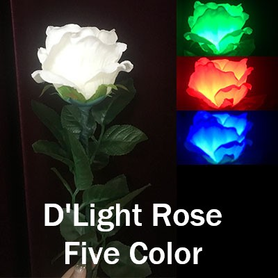 D'Light Rose Five Color (4914-Z2)