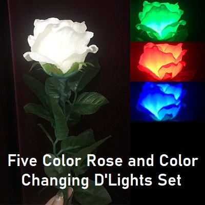 Five Color Rose and Color Changing D'Lights Set