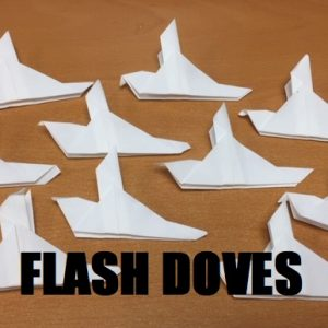 Flash Doves (4970)