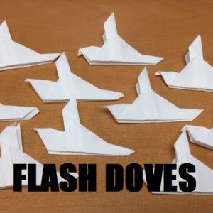 Flash Doves (4970)