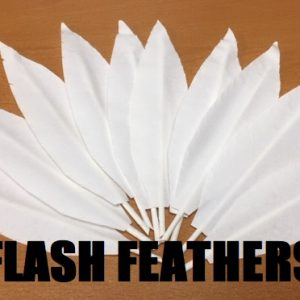 Flash Feathers (4972)