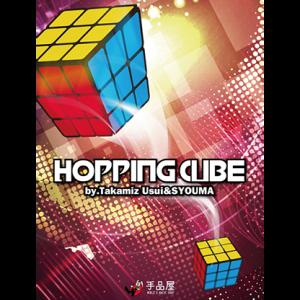 Hopping Cube by Takamiz Usui & Syouma (4861)
