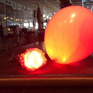 Magic Balloon & Rose Kit by Jei-Min Lee (2713)