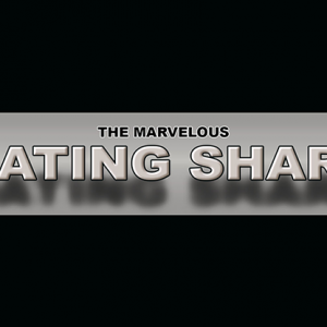 The Marvelous Floating Sharpie by Matthew Wright (4981)