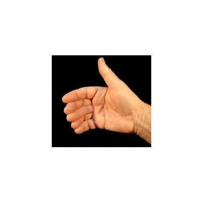 Sixth Finger Large (1280)