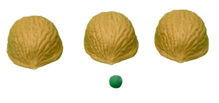 Three Shell Game Vernet (0503-w3)