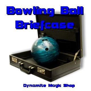 Bowling Ball Briefcase (2166J5)
