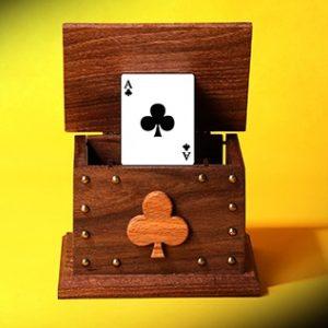 Card in the Air by Tora Magic (4723)