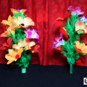 Double Flower Bouquet by Mr. Magic
