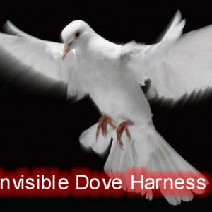 Invisible Dove Harness