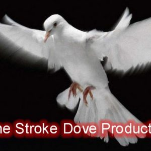 One Stroke Dove Production