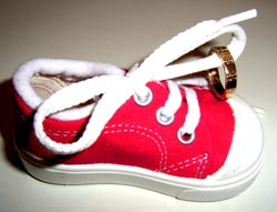 Ring on Shoe (2305)