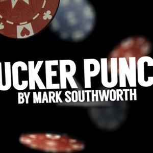 Sucker Punch by Mark Southworth (4236)
