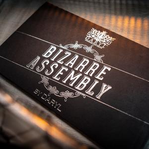Bizarre Assembly by Daryl (2227)