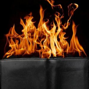 ZAP Electronic Fire Wallet Professional (5087)